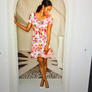 Boston Proper Alexia Admor Dress